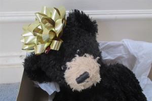 Gift Bear _IMG_0802