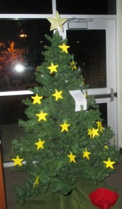 Christmas Star Tree _IMG_1336