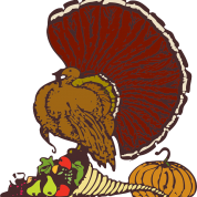 PUMC to Collect Turkeys for HollyDELL Families (11/15/20 & 11/22/20)