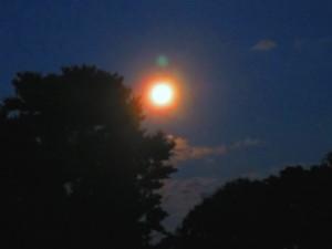 Full Moon _IMG_0671