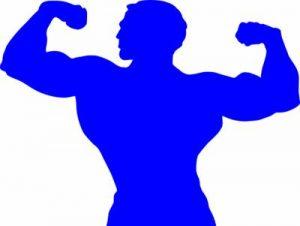 bodybuilder-295375_960_720 400x300
