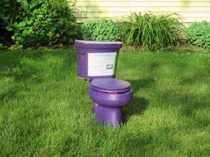 PurplePotty _IMG_3512